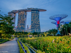 Marina Sands Bay with Super Trees - Singapore (patuffel) Tags: marina sands bay with super trees singapore