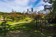 IMG_2499 (Evgeny Gorodetskiy) Tags: sunshine autumn garden landscape building travel cityscape outdoor weekend city park skyscrapper himarikiyu japan tokyo minatoku tōkyōto япония jp