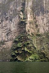 Tuxtla Canyon del Sumidero Christmas Tree Falls