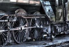 Oily Rag (Mark Gray Photos) Tags: flying scotsman sheffield park bluebell line southern visit oily rag steam train gala canon 80d