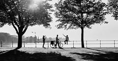 Silhouette - Snapshot (macplatti) Tags: xt10 xf1855mmf284rlmois bregenz sunset fruehling springtime silhouette bw swmonochrome koblach vorarlberg austria aut