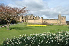 DSC_6580 (nordic lady) Tags: alnwick castle harry potter sightseeing england alnmouth holidays easter 2017