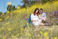 IMG_0119 (photos_by_EmilyRose) Tags: maternity flowers field momtobe babybump baby