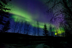 042017 - Front yard 2am view (Nathan A) Tags: alaska ak fairbanks salcha northstar river spring cold ice snow night aurora auroraborealis northernlights nightsky stars farnorth geomagnetic green nature outdoors beauty skygazing