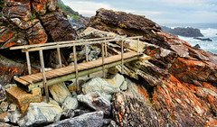 Lonely Bridge [Explored] (DILLEmma Photography) Tags: bridge walk hiking ocean rocks cliffs water railing wood africa tsitsikamma hike