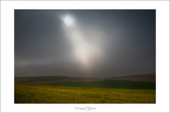 Lumière Divine (Emmanuel DEPARIS) Tags: landscape nikon cote paysage emmanuel brume d800 colza dopale deparis