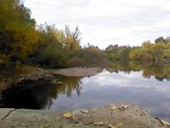 Fall_Talkoot_088
