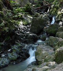Cataract Falls, Marin County (S-Roth) Tags: color creek river lens one waterfall stream long exposure fuji smooth marincounty phase cataractfalls 65mm phaseone p25 gx680