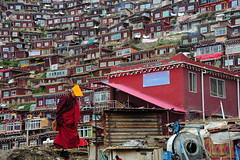 The Religious Encampment of Larung Gar, Tibet 2013 (reurinkjan) Tags: monastery 2013 བོད་ལྗོངས། ©janreurink tibetanplateauབོད་མཐོ་སྒང་bötogang tibetབོད buddhistསངས་རྒྱས་ཆོས་ལུགས་པ nunneryཨ་ནི་དགོན་པ་anidgonpa monkགྲྭ་བ།grwaba buddhismསངས་རྒྱས་ཆོས་ལུགས།sangsrgyaschoslugs tibetannationalitytibetansབོད་རིགས།bodrigs tibetannationtibetanpeopleབོད་ཀྱི་མི་བརྒྱུདbökyimigyü nunཇོ་མོ།ani sisterhoodཨ་ནིའི་ཚོགས་པanitsokpa khamཁམས།easterntibet ༢༠༡༣ khamཁམས་བོད khamsbodkhamwö sertalགསེར་ཐར།countyserthar larunggarབླ་རུང་སྒར། nyingmapahermitage khenpojikpunalsorecognizedastertonsogyeltheincarnationoflerablingpa gyutrullhakhang gyultrullhakang tonpeidekhang monasticcollegeshedraoflarunggar foundedbydudjomlingpa inthelate19thcentury greatertibetབོད་ཆེན་པོ böchenpo
