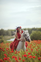 wonders of poppies field (nikaa) Tags: red summer horse freedom joy reddress fairytales fairygarden poppiesfield
