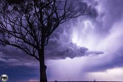 Wubin - September 7th 2013 #8 (Steve Brooks Imaging) Tags: weather live australia perth western lightning storms