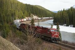 Canadian Pacific 16.5.2014 0562 (orangevolvobusdriver4u) Tags: canada train eisenbahn zug alberta rockymountains canadianpacific kanada 2014 güterzug archiv2014