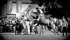 El redomón pangaré (Eduardo Amorim) Tags: horses horse southamerica caballo uruguay cheval caballos cavalos prado montevideo pferde cavalli cavallo cavalo gauchos pferd hest hevonen chevaux gaucho impresionante 馬 américadosul beijos montevidéu häst uruguai gaúcho 말 amériquedusud лошадь gaúchos 马 sudamérica suramérica américadelsur סוס südamerika meencanta jineteada حصان άλογο americadelsud gineteada ม้า americameridionale semanacriolla semanacriolladelprado eduardoamorim ঘোড়া
