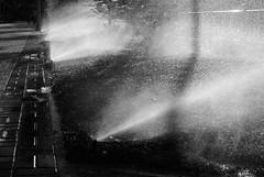 Mana Matutino II (brunaita) Tags: madrid morning blackandwhite espaa blancoynegro luz maana licht spain neighborhood amanecer sonnenaufgang morgen barrio spanien stadtviertel schwarzundweiss sansebastindelosreyes nikonv1 nikon1030f3556vr