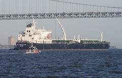 NEW CONSTELLATION in New York, USA. May, 2014 (Tom Turner - SeaTeamImages / AirTeamImages) Tags: nyc bridge usa newyork port bay harbor marine ship unitedstates harbour transport anchorage pony maritime transportation anchor statenisland bigapple narrows tanker stapleton tomturner newconstellation