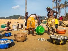 Fish For Everyone (Makgobokgobo) Tags: africa people beach sussex hamilton sierraleone peninsula francos freetown westernarea