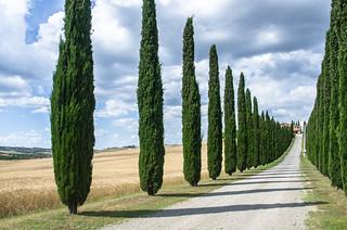 Poggio Covili. Tuscany, Italy