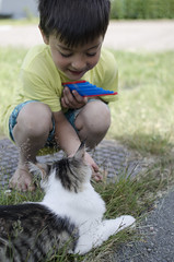 June 17th (Lisa Josefsson) Tags: boy playing cute animal cat fur kid young whiskers paws owner