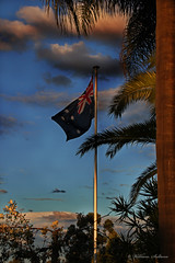 Flag (wil_sul) Tags: trees sky clouds garden landscape flag australia pole infocus highquality 68will