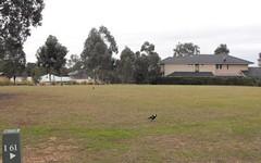 Lot i61, 54 Angophora Drive, Rothbury NSW