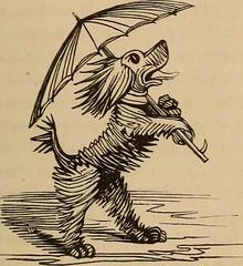 Anglų lietuvių žodynas. Žodis pug-nose reiškia n trumpa riesta/priplota nosis lietuviškai.