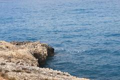 IMG_4036 (DolphinART) Tags: sea island greece zante zakynthos       ionical zakynf