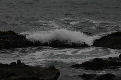 waves (emilymancia_) Tags: california blue summer santacruz cold beach wet water fog grey rocks waves gray august sangregorio crashing