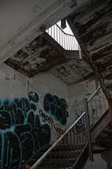 IMG_0085 (Jeffrey Terranova) Tags: newyork abandoned graffiti greenhouse urbanexploration bti yonkersny boycethompsoninstitute canonrebelxsi