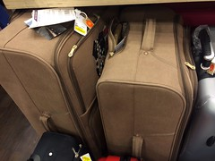 More Luggage Shopping (Jonathan Rolande) Tags: summer brown sun holiday shopping image good free sunny luggage times freeimage