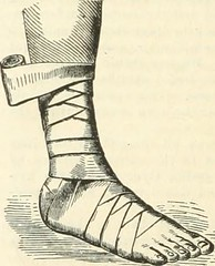 "Image from page 299 of ""The Pharmaceutical era"" (1887)"