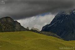 paesaggio di montagna, mountain landscape (paolo.gislimberti) Tags: mountainlandscape paesaggiodimontagna alpineenvironment alpinegrassland prateriaalpina ambientealpino paesaggilandscapesmontagnemountains