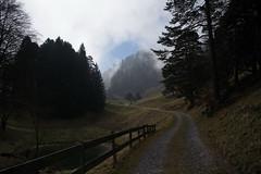 Fläscher Berg (GR) (Toni_V) Tags: m2403379 rangefinder digitalrangefinder messsucher leica leicam mp typ240 type240 28mm elmaritm12828asph hiking wanderung randonnée escursione fläscherberg graubünden grisons grischun nebel fog mist landscape trail wanderweg sentiero perspective switzerland schweiz suisse svizzera svizra europe ©toniv 2017 170325