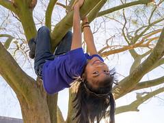 SouthernNV15_3410 (GirlScoutsCC) Tags: brownies hispanic outdoors portraits treeclimbing girl risktaker