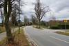 DSC_8609-A_ (armin.54) Tags: platanen strasenbäume