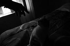 try to catch me! (pepe amestoy) Tags: blackandwhite indoor fujifilm xe1 voigtländer color skopar 421 vm leica m mount