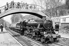 '44806 AT GOATHLAND STATION' - 'LMS BLACK 5 44806' - NYMR 1st APRIL 2017 (tonyfletcher) Tags: lmsblack544806 black5 goathlandstation steamlocomotive tonyfletcher nikond3300 nikkor18105 nikon nymr northyorkshiremoorsrailway grosmont steam april2nd2017 northyorkshirepullman