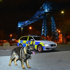 PD Kaizer (S11 AUN) Tags: durham constabulary bmw 330d 3series xdrive touring anpr police traffic car rpu roads policing unit 999 emergency vehicle policeinterceptors middlesbrough teesside transporter bridge cleveland nk13dgz policedogs dog section pdkaizer german shepherd gsd