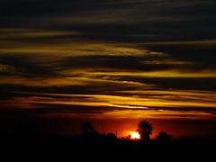 Golden Haze (Scott Douglas Worldwide) Tags: az arizona awesome amature sky s sunrays smiling sun sunset sexy beautiful badass b bronze bright colour closeup c clouds cute camera