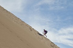 Steep (brucetopher) Tags: dune great sand dunes sanddunes greatsanddunes us nationalpark usa park parks parksservice summer touring tourism travel visit hike traveling vacation holiday alamosa colorado woman strong athlete climb athletic strength angle mountain climbing hiking