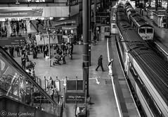 Waiting for trains at Leeds (steve.gombocz) Tags: urbanstreet blacknwhite greyscale streetscene blackwhite bwphotos bw bwstreet flickrbw bwflickr blackwhitephotos blackwhitephotography flickrstreet blackwhitestreet bwstreetphotography streetlife street blackandwhite station railway railwaystation streetphotographs bwphotographs streetphotography streetbw bwphotography photosinblackandwhite flickrblackandwhitephotos bwpictures explorebw explorestreet flickraddicts flickraddict blackandwhitephotographs purestreet out outandabout streetpictures flickr explore exploreflickr leeds leedsinbw leedsmonochrome leedsstation zwartwit neroebianco sortoghvid mustavalkoinen svarthvitt svartoghvitt svartochvitt czarnyibiaty pretoebranco noiretblanc schwarzundweiss negroyblanco noirblanc schwarzweiss negroblanco pretobranco nerobianco olympus olympususers olympusem5mark2 olympusm25mmf18 olympuseurope olympusmicro43rdscamera olympusbw micro43rdsuk olympusstreet olympuszuikodigitalclub olympusamateurs olympusmzuiko25mmf18lens