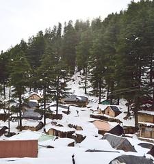 Village at a foothill (aakash_gautam) Tags: village snow sun hill forest tree nature kajjiar india hut