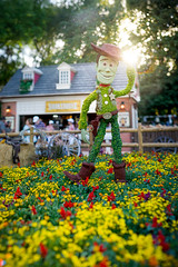 Epcot - Tip of the Hat (Jeff Krause Photography) Tags: american bokeh bokehpano cowboy disney epcot festival flower garden pano panorama park pavilion sherif story topiaries topiary toy wdw woody theme orlando florida unitedstates us