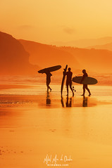 Surfistas (Mimadeo) Tags: surfer surfers water sunset boards shore orange ocean sea beach sport man men silhouette surfboard summer surf surfing rider shoreline seaside sky board evening vivid vibrant color people friends reflections three many friendship sopelana sopela bizkaia euskadi basquecountry
