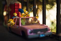 Homer Simpson's car_1 (stefano.crem) Tags: homer simpson bart margie maggie 1986 plymouth junkerolla miniature