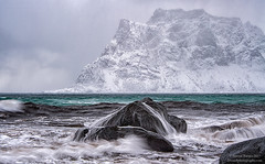 Norwegian Sea Details (Dwood Photography) Tags: norwegian sea details norwegiansea norwegianseadetails dwoodphotography dwoodphotographycom seascape 2017 turquoise water green white snow mountain rock rocks