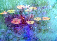 lily pond layers (Hilarywho) Tags: layered collage lily lilypond impressionistic