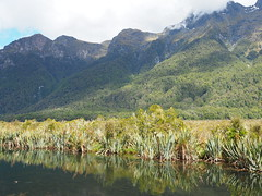 Mirror Lakes, The Milford Road, Te Anau to Mirror Lakes SH94 New Zealand (Kalpesh Patel.) Tags: mirrorlakes themilfordroad teanau newzealand natural outstanding beauty mirror refelction serence scenic landscape lake water mountain tree fauna flora blue sky cloud symmetry nationalpark southisland serene peace surreal divine huge massive epic wildlife
