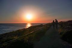 Brotherhood In Sunset (hin_man) Tags: bigsur pointslobostatepark 2016 christmas brotherhoodsunset brotherhood sunset zonlai zonlai25mmf18