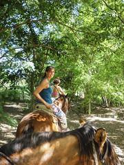 Puerto Escondito Horse rise in mountains-2