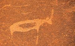 Namibia Rock Art-2 (RWShea Photography) Tags: africa rockart petroglyph